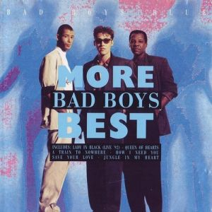 More Bad Boys Best Album