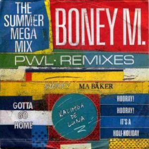 The Summer Mega Mix Album