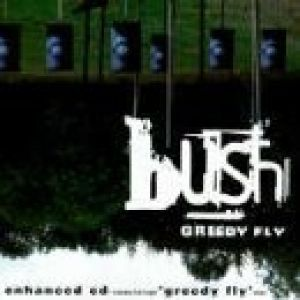 Greedy Fly Album