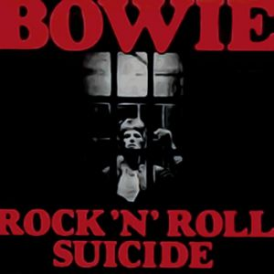 Rock 'n' Roll Suicide Album