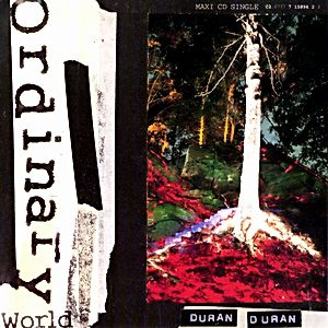 Ordinary World - album