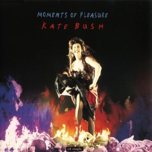 Moments of Pleasure Album