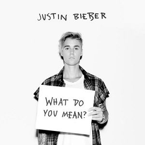 What Do You Mean? - album
