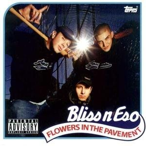 Flowers in the Pavement Album