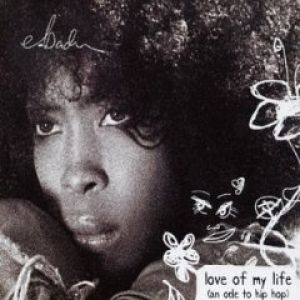 Love of My Life (An Ode to Hip-Hop) - album