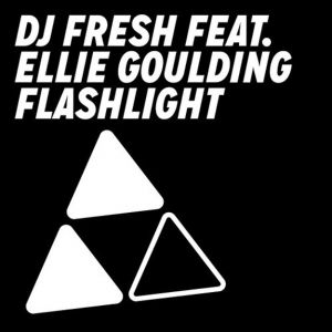 Flashlight Album