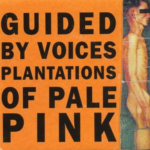 Plantations of Pale Pink - album