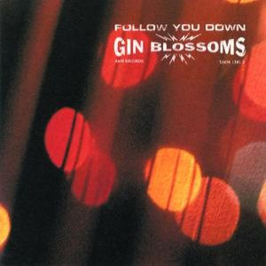 Follow You Down - album
